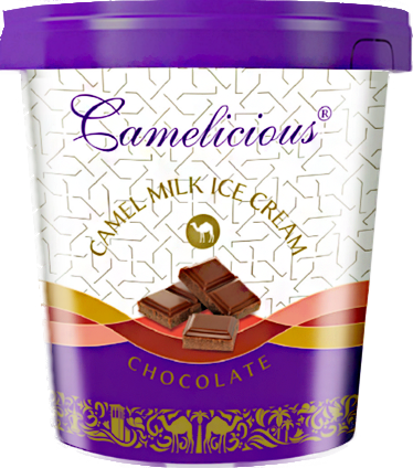 ice_cream_ chocolate